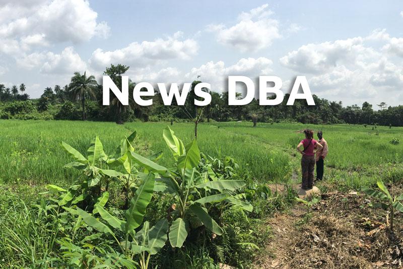 News DBA